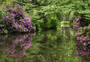 Märchenhafter Tiergarten